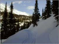 Snowmobile trail into Noisy Basin, Mont.