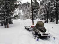 Snowmobile access to forest clearing  near site at Red Mountain, Mont.