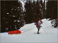 Worker hauls snowpack samples away from site near Red Mountain Pass, Colo.